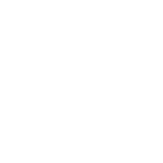 Ravisa